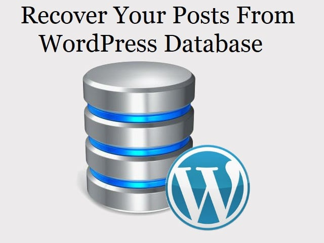WordPress Database