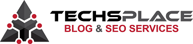 TechsPlace SEO Services