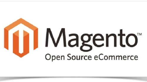 How Magento Extensions Make Your eCommerce Website Successful?