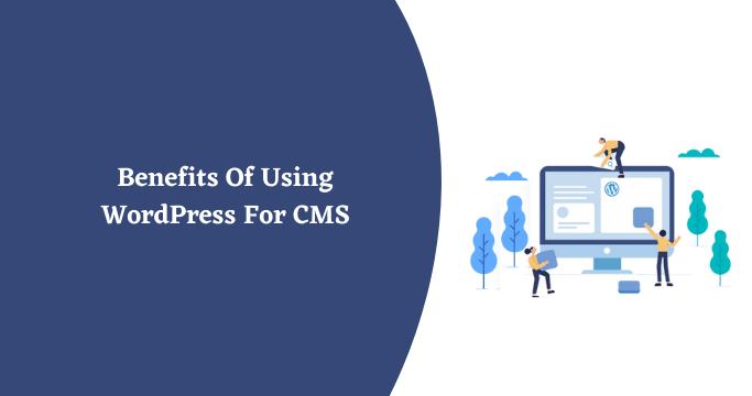 WordPress For CMS